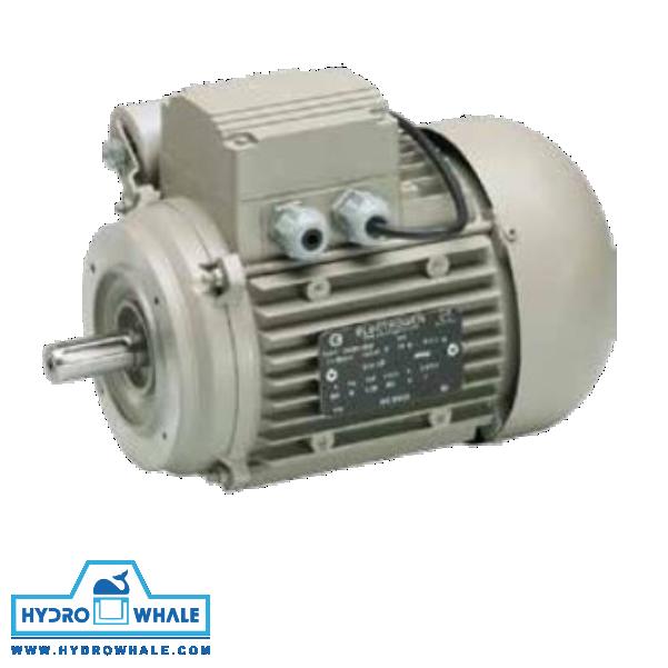 الکتروموتور تکفاز IMB14 الکتروژن - فروشگاه هیدروال