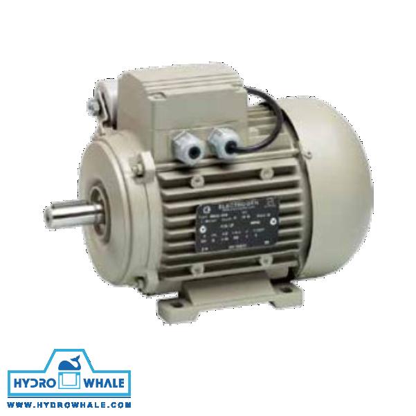 الکتروموتور تکفاز IMB3 الکتروژن - فروشگاه هیدروال