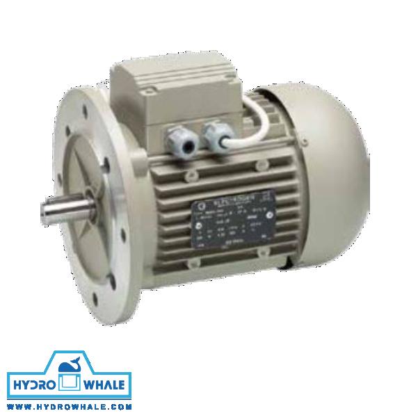 الکتروموتور تکفاز IMB5 الکتروژن - فروشگاه هیدروال