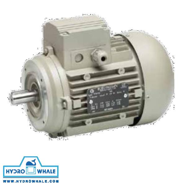 الکتروموتور سه فاز IMB14 الکتروژن - فروشگاه هیدروال