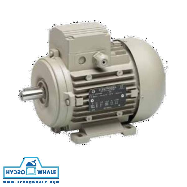 الکتروموتور سه فاز IMB3 الکتروژن - فروشگاه هیدروال