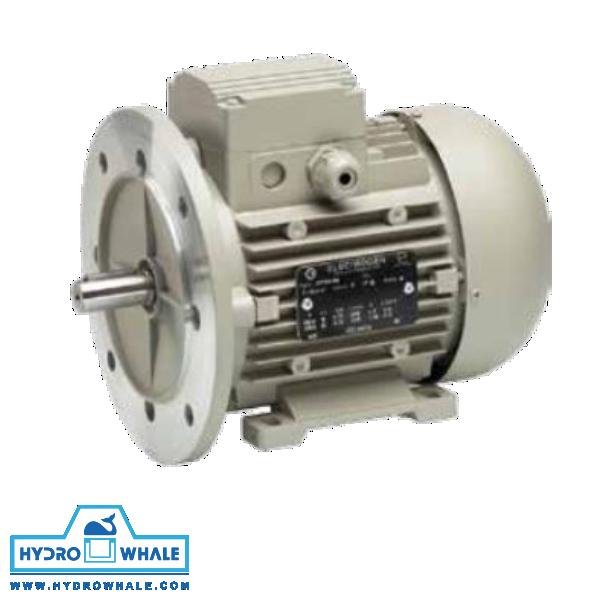 الکتروموتور سه فاز IMB35 الکتروژن - فروشگاه هیدروال