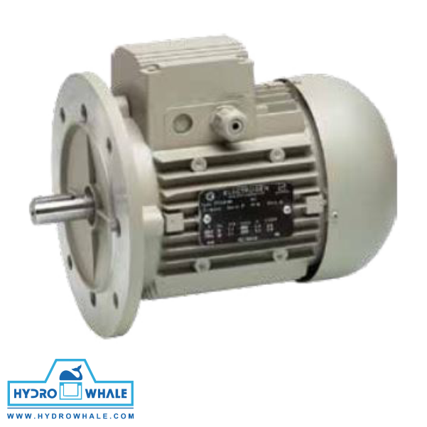 الکتروموتور سه فاز IMB5 الکتروژن - فروشگاه هیدروال